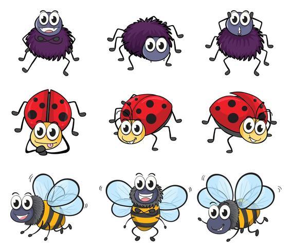 Un ragno, una coccinella e un set di api vettore