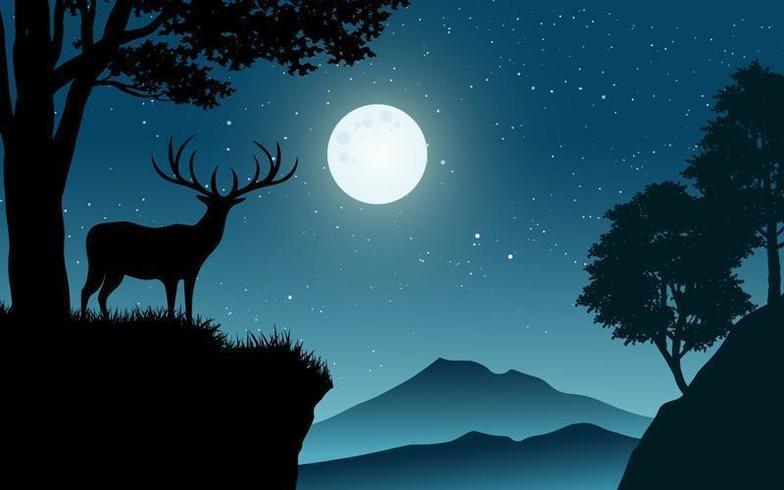 Cervi sulla scogliera di notte vettore
