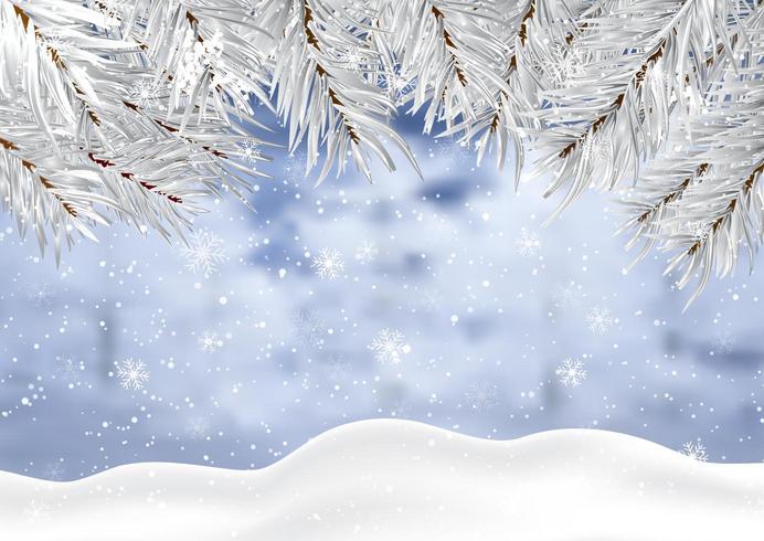 Sfondo di Natale con rami di neve e albero d'inverno vettore