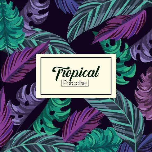 foglie tropicali esotiche sfondo vettore