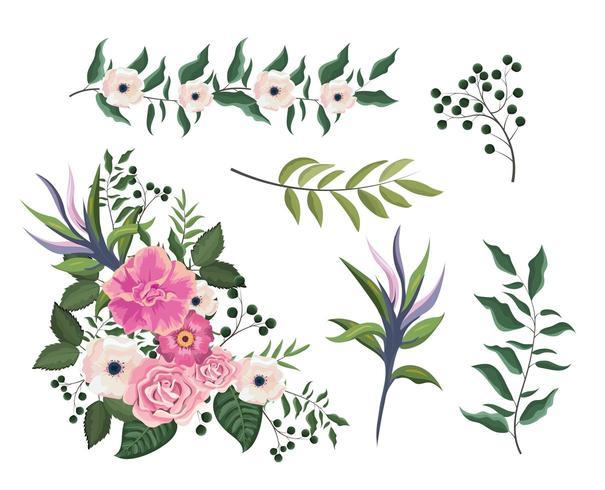 impostare rose e fiori piante con foglie di rami vettore