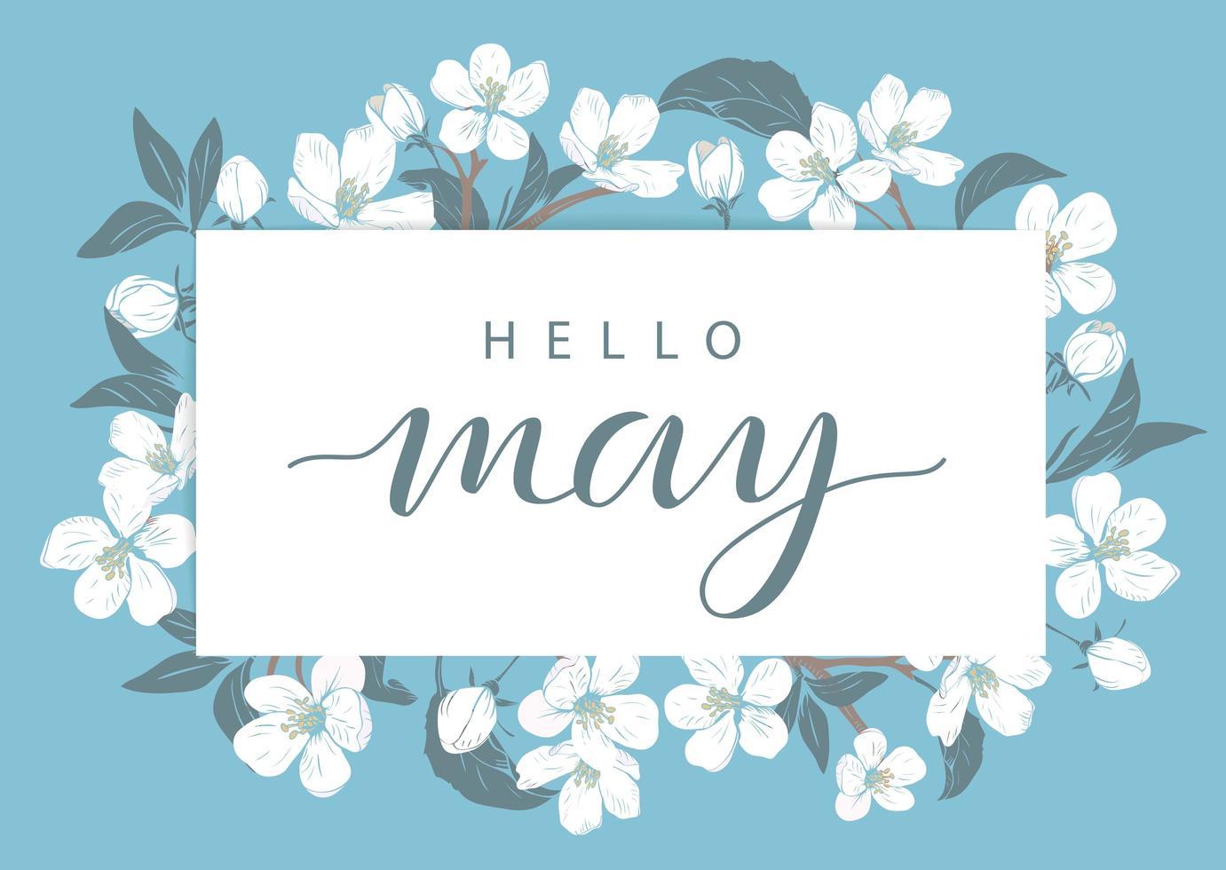 modello di carta di fiori di ciliegio con testo ciao maggio vettore