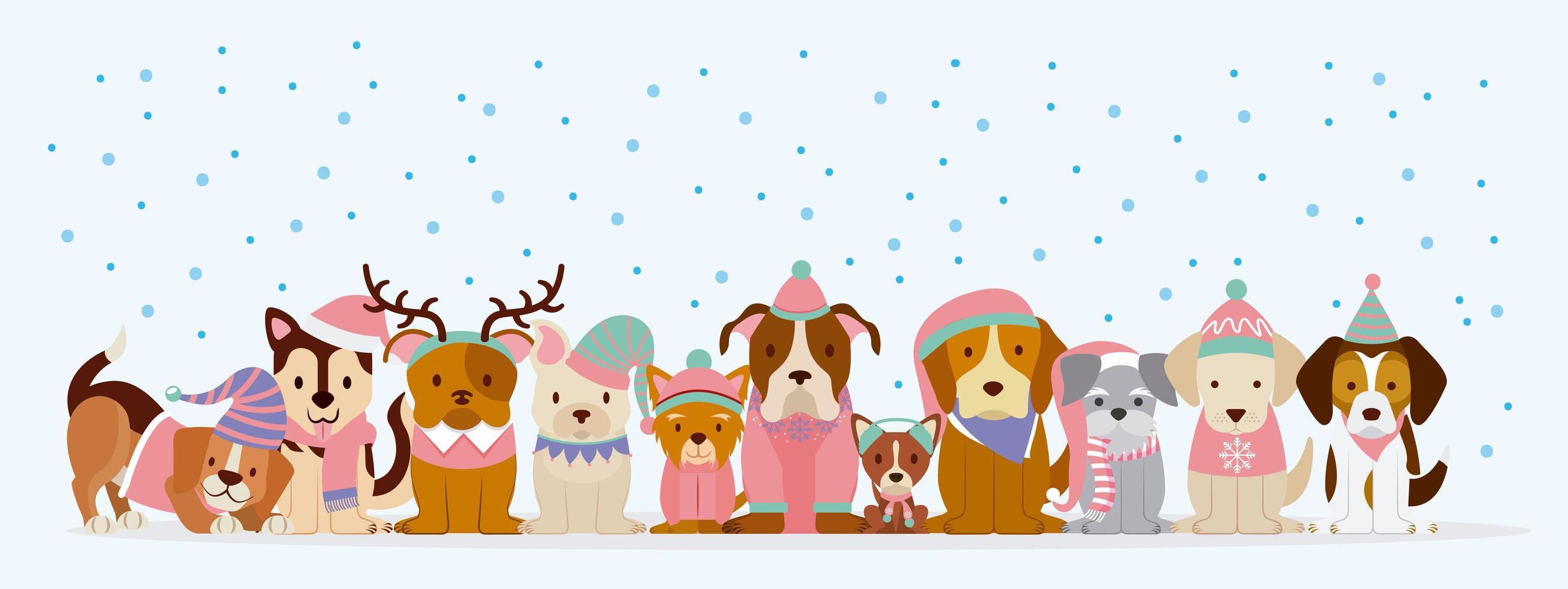 cani in inverno abbigliamento nella neve vettore
