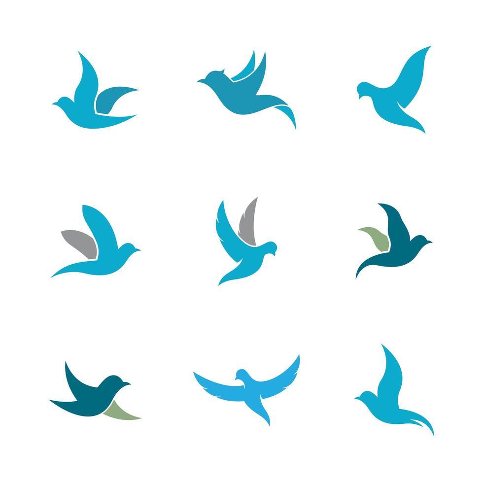 set di icone di colomba vettore