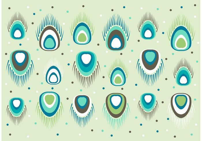 Vettore del modello di pavone