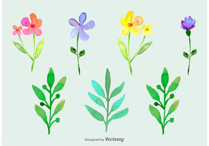 Fiori ornamentali acquerellati vettore