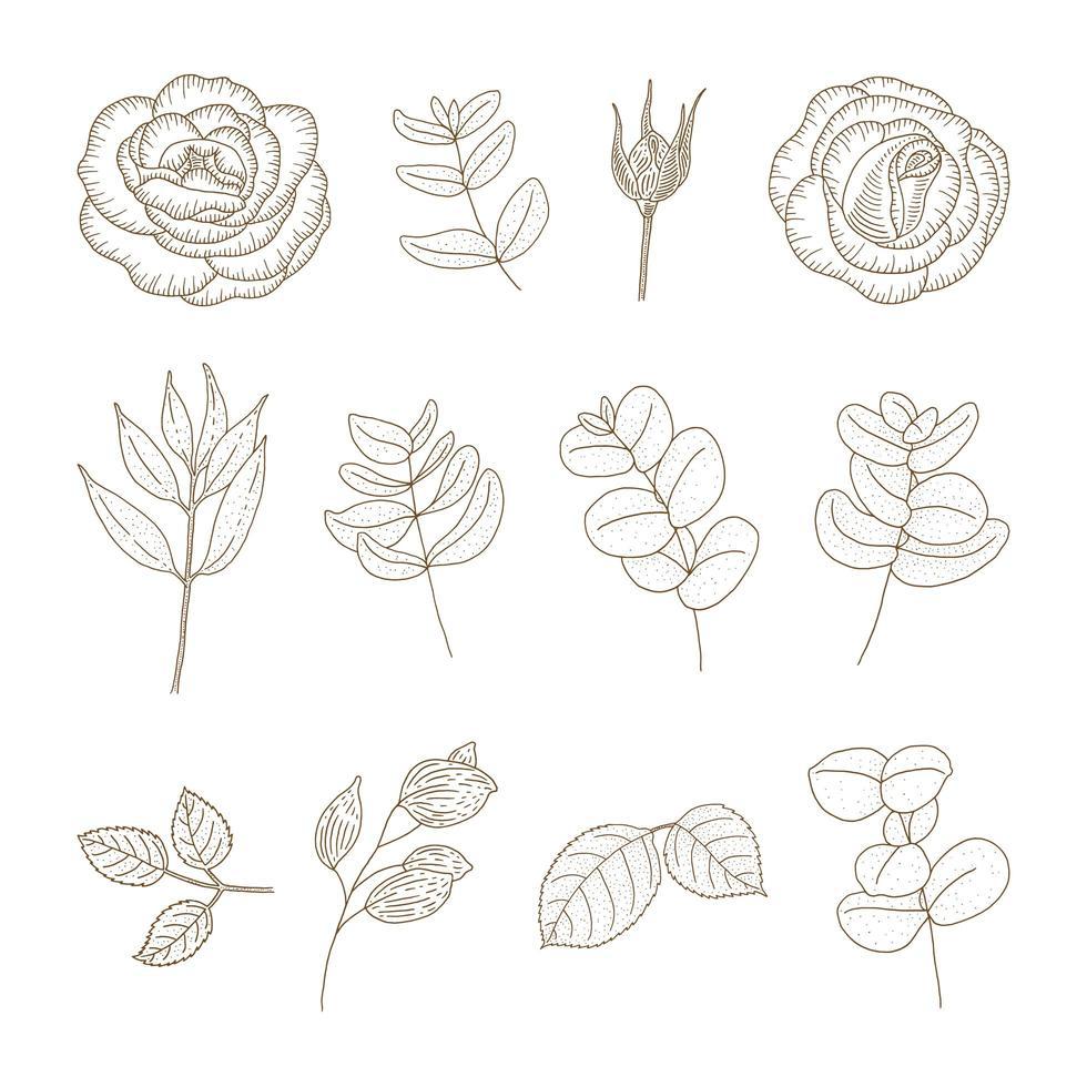 set di fiori e piante d'epoca vettore