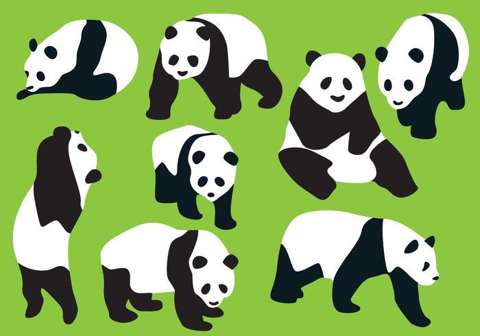Vettori di sagoma orso panda