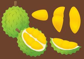 Vettore di Durian