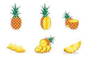 Ananas vettoriale gratuito