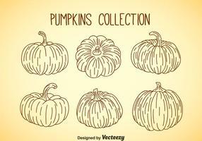 Collezione Pumpkin vettore