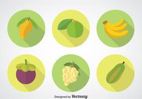 Set di icone di frutta lunga ombra vettore