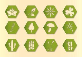 Icone di piante vettoriali esagonali