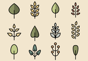 Vettore di foglie gratis