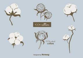 Vettore di piante di cotone gratis