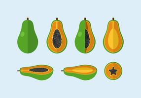 Vettore papaia