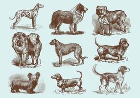 Vettori del cane del disegno di vecchio stile