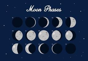fase lunare vettoriale