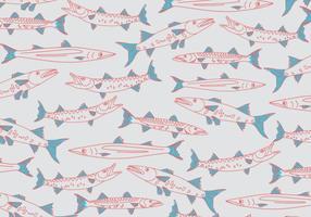 Vettore di barracuda