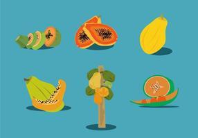 Vettore di papaia fresca