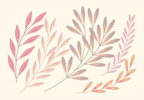 Set vettoriale morbido ramo