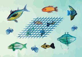 Pacchetto di vettore di pesce acquerello