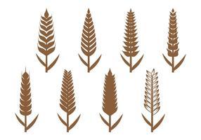 Icona di orecchie di grano vettore
