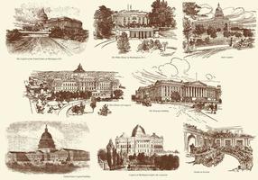 Vecchio stile disegnando edifici degli Stati Uniti vettore