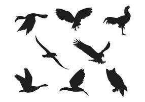 Collezioni di silhouette di uccelli vettore