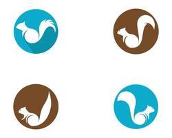 set di icone di scoiattolo circolare vettore
