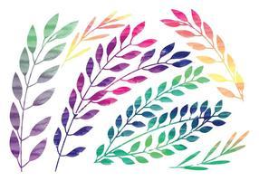 Rami di acquerello di vettore arcobaleno
