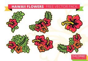 Pacchetto di vettore gratuito di fiori di Hawaii