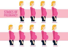 Vettore di mamma incinta