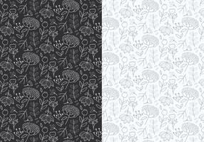 Outline Pattern delle piante
