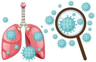 cellula coronavirus nei polmoni umani