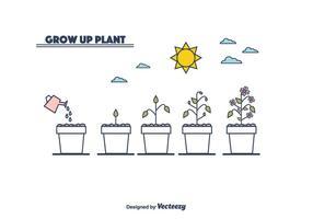 Vettore del ciclo di crescita delle piante