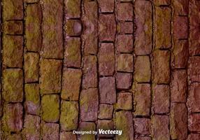 Struttura realistica della parete di pietra di vettore