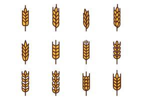 Vettore di grano