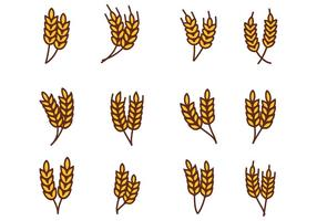 Vector gratuito di grano