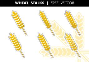 Il grano insegue il vettore libero