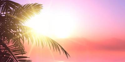 banner design estivo con silhouette di foglie di palma vettore
