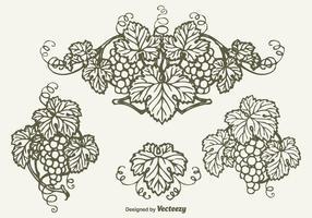 Disegnato grappolo d'uva disegno vettoriale