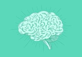 Vettore di cervello disegnato a mano brillante