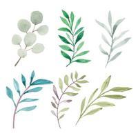 collezione di elementi foglia verde dipinti a mano