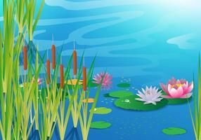 Lago con Cattails Vector