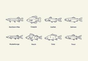 Vettore di pesce gratis
