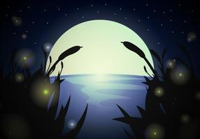 Vettore di notte del paesaggio della lucciola
