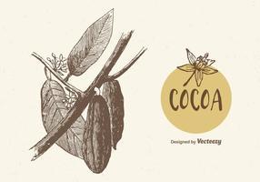 Illustrazione di vettore del ramo di cacao