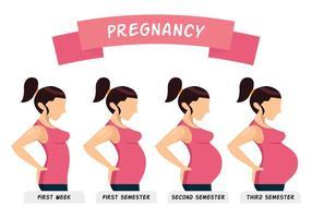 Illustrazione di gravidanza vettore