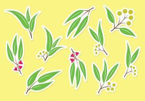 Vettore di eucalipto set gratuito